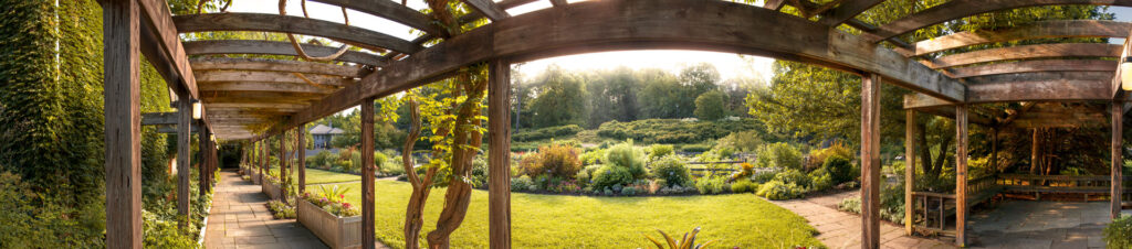 A panoramic image of the walkway at the Botanic Gardens' herb garden.
