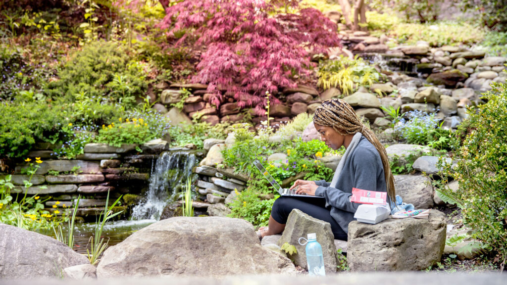 A woman sitting using a laptop at the Ruth Uris Garden.