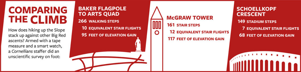 Graphic illustration compares the climb up the Slope with the climb up the stairs of McGraw Tower and Schoellkopf Crescent