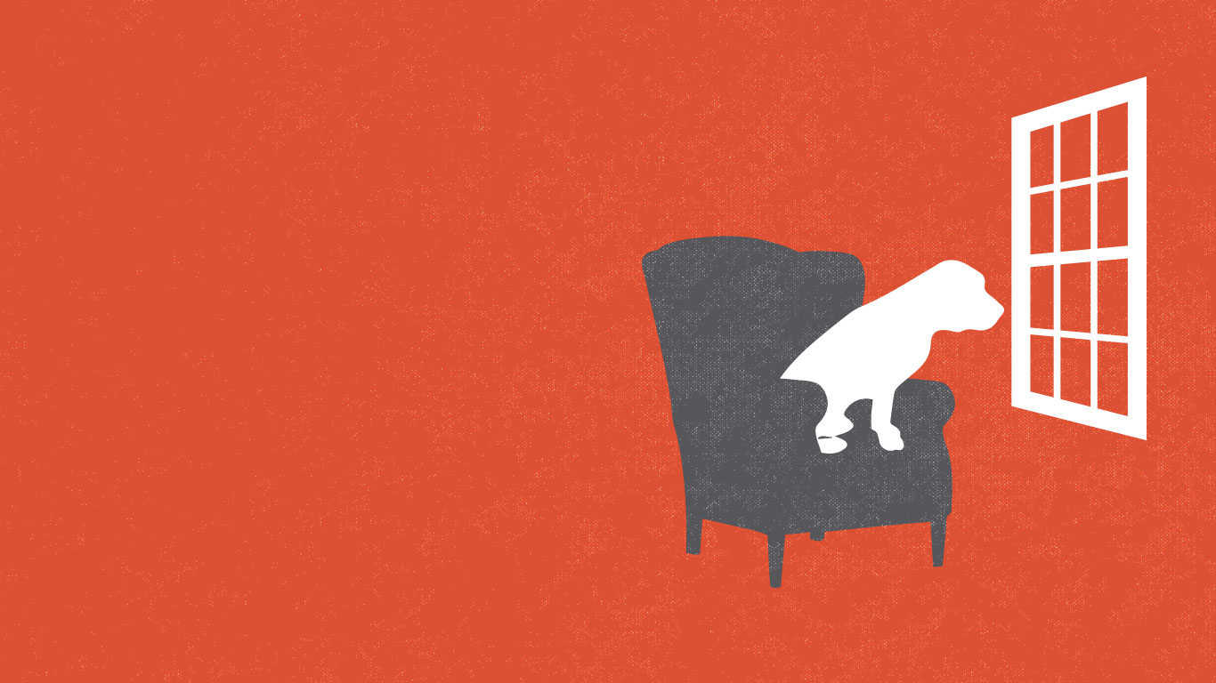 An illustration of a lonely dog in a chair by a window.