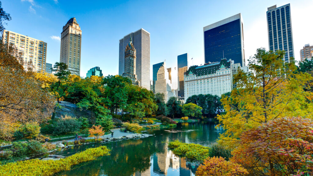 A view of Central Park