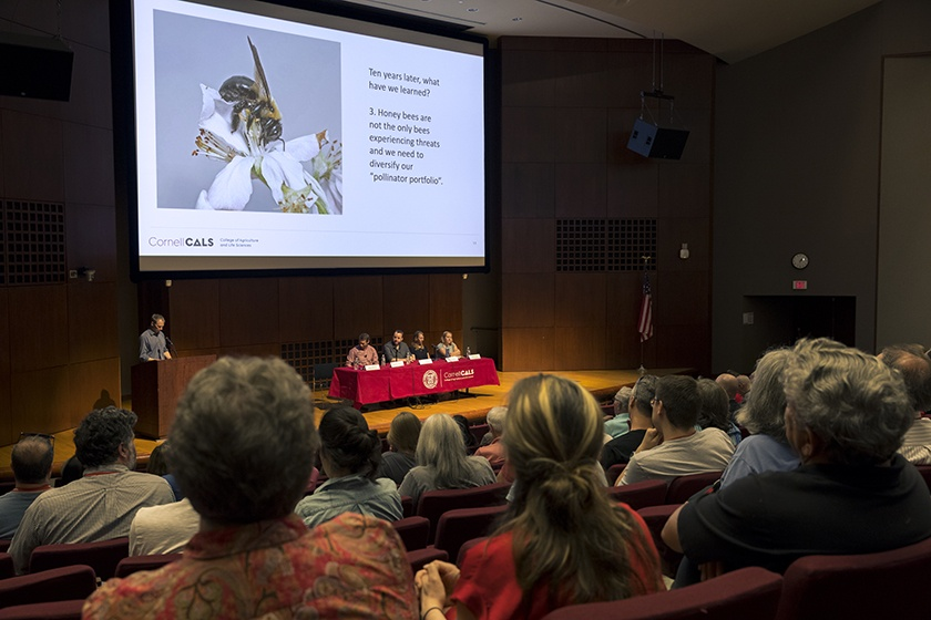 A Cornell expert discusses bees and other pollinators.