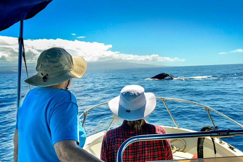 Katy Payne and Annie Lewandowski watch a whale from the deck of a boat