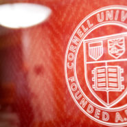 Cornell seal on glass wall