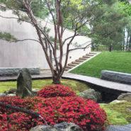 Morgan Garden at the Johnson Museum
