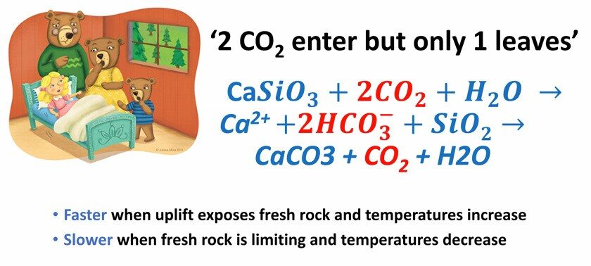 """2 CO2 enter but only 1 leaves slide"" from Dean Houlton's Feb 22 seminar"