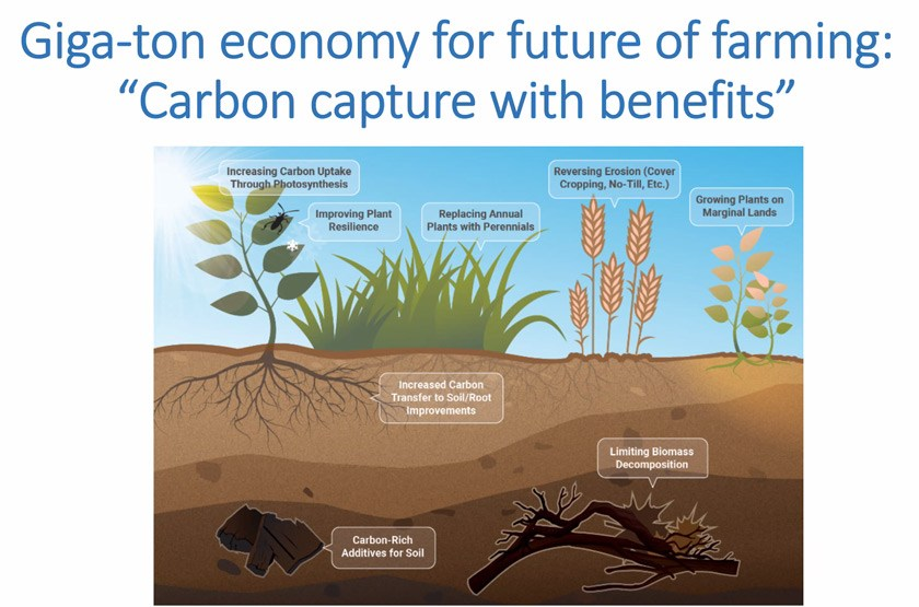"""Carbon capture with benefits"" slide from Dean Houlton's Feb 22 seminar"