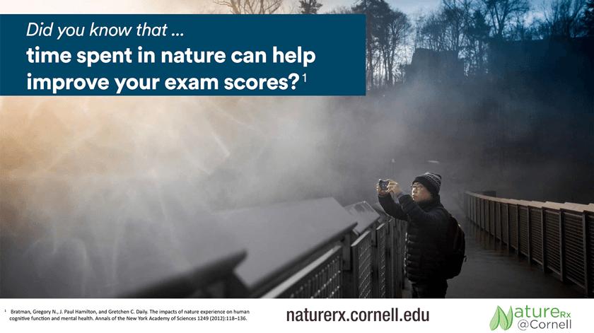 NatureRx exam scores poster