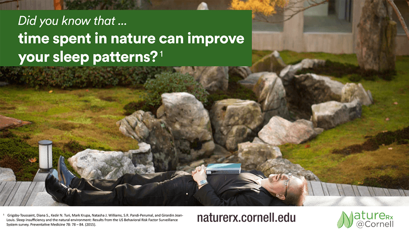 NatureRx sleep poster