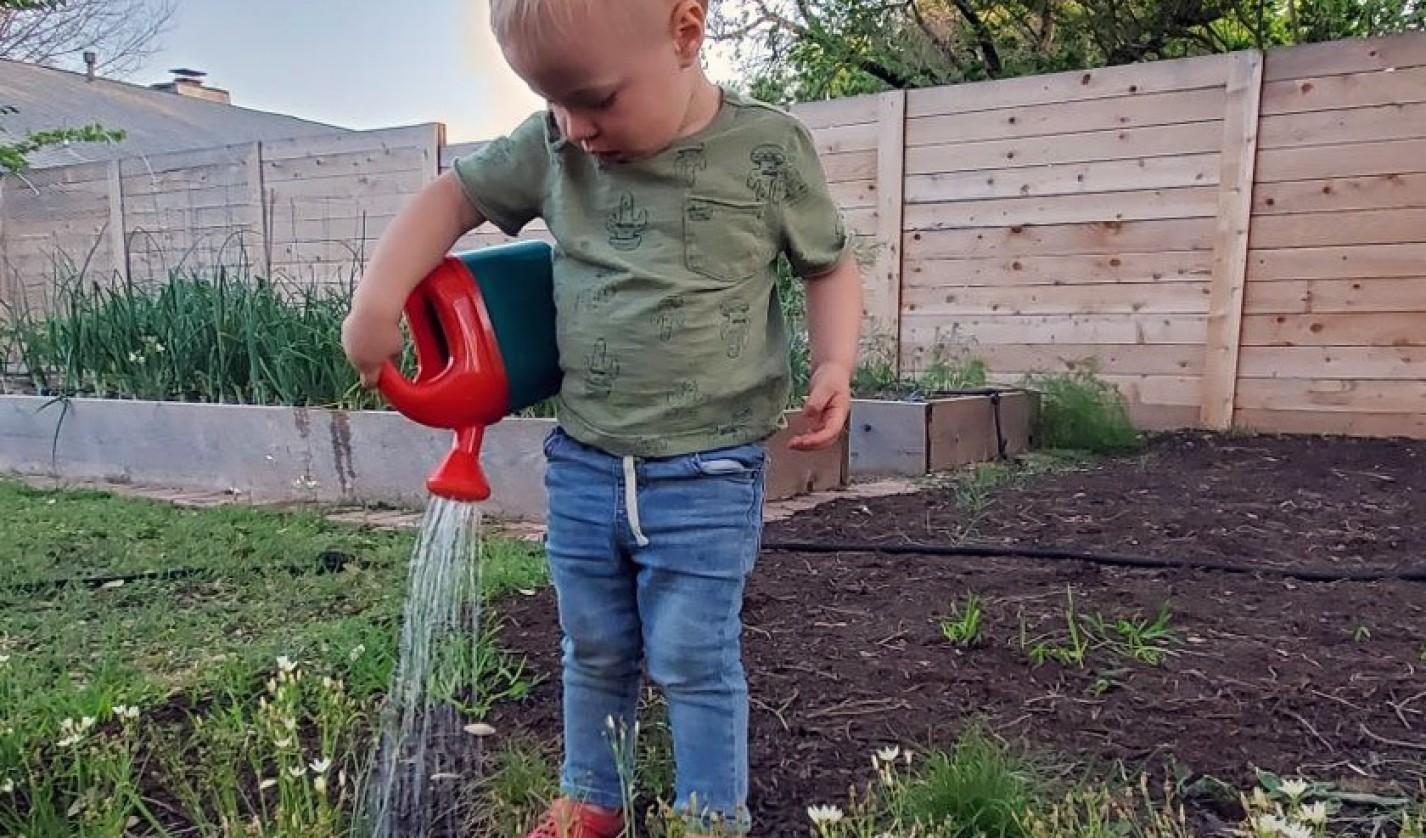 Ezra Hall, son of Chad Hall '09 and his wife Jill (Bebee) Hall '09, waters their backyard garden.