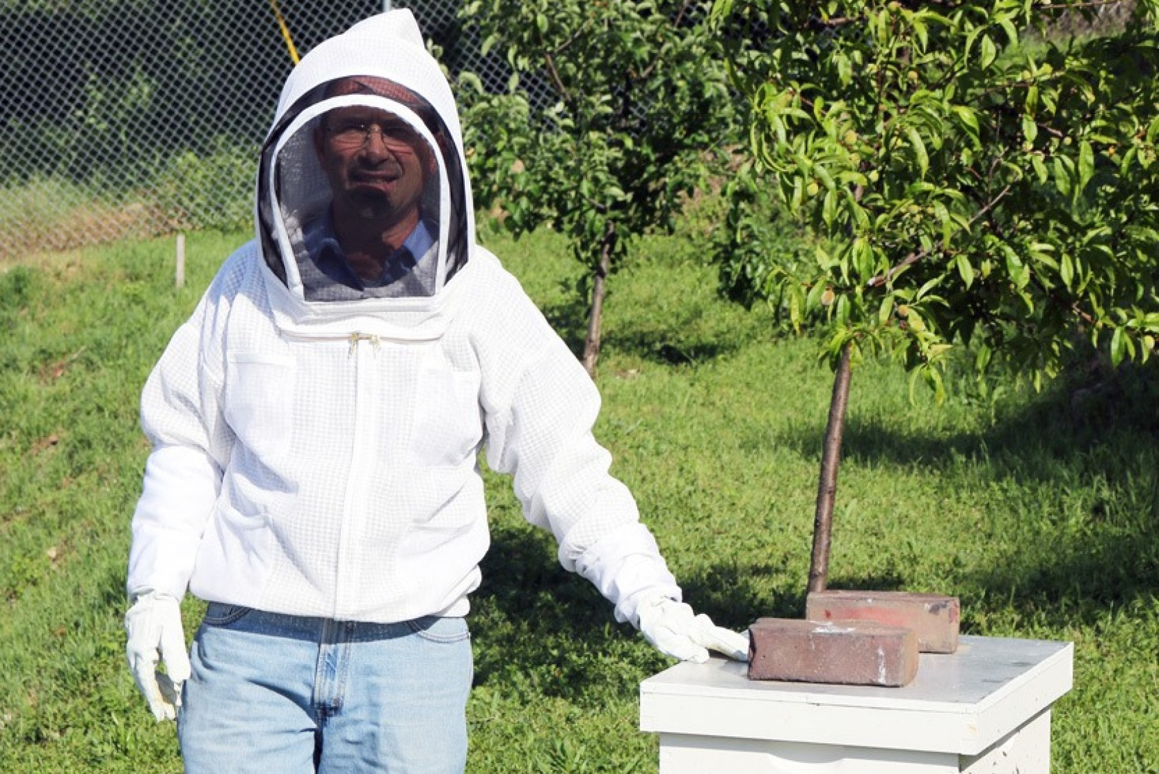 Team member at one of the group's beehives