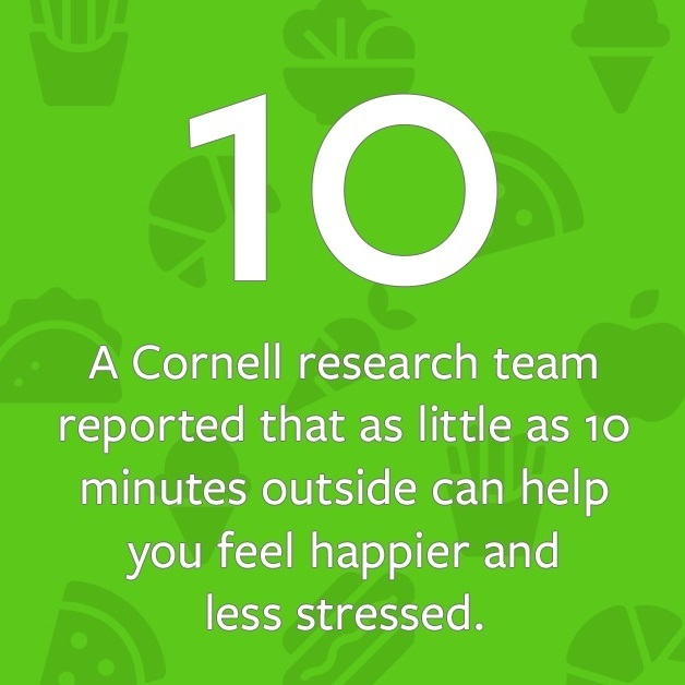 A Cornell research team reported that as little as 10 minutes outside can help you feel happier and less stressed.
