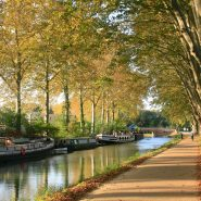 walkway beside a French canal