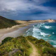 Coastal scene in rural New Zealand