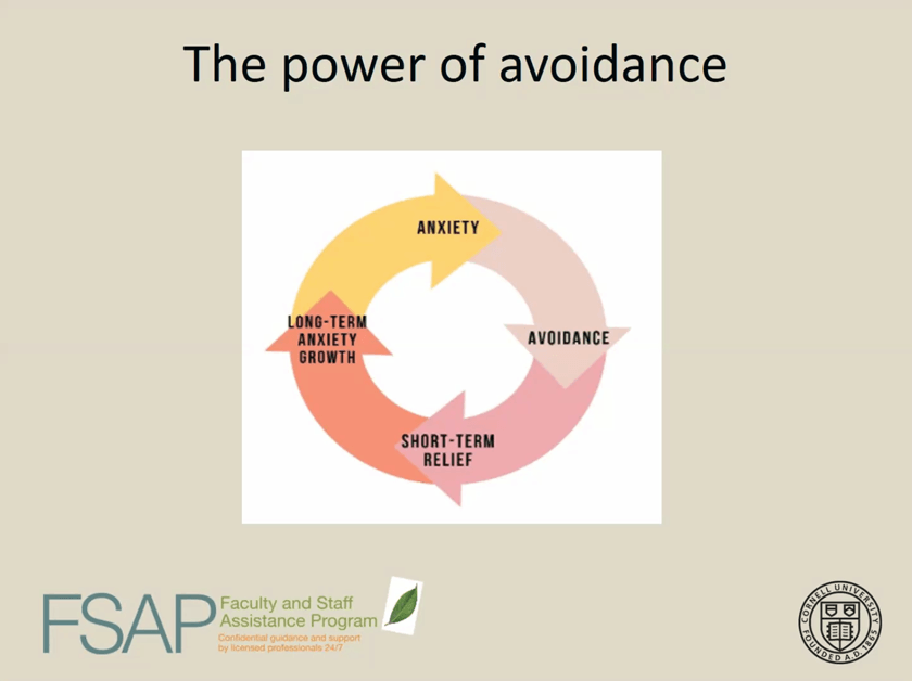 """""""The power of avoidance"""" slide from FSAP webinar"""