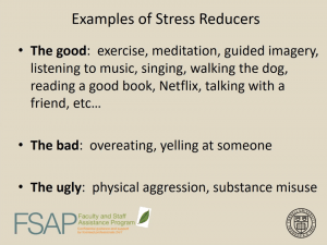 """""""Examples of stress reducers"""" slide from FSAP webinar"""