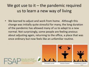 """""""We got used to it"""" slide from FSAP webinar"""